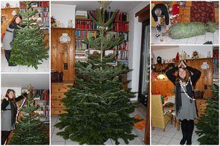 Dezember 2012 Weihnachtsmarkt1